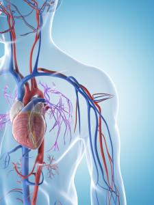 kalp-damar-hastaliklari-tedavi